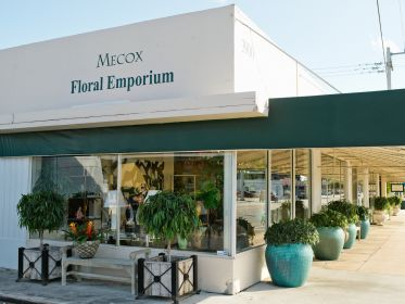 Attirant Mecox Gardens