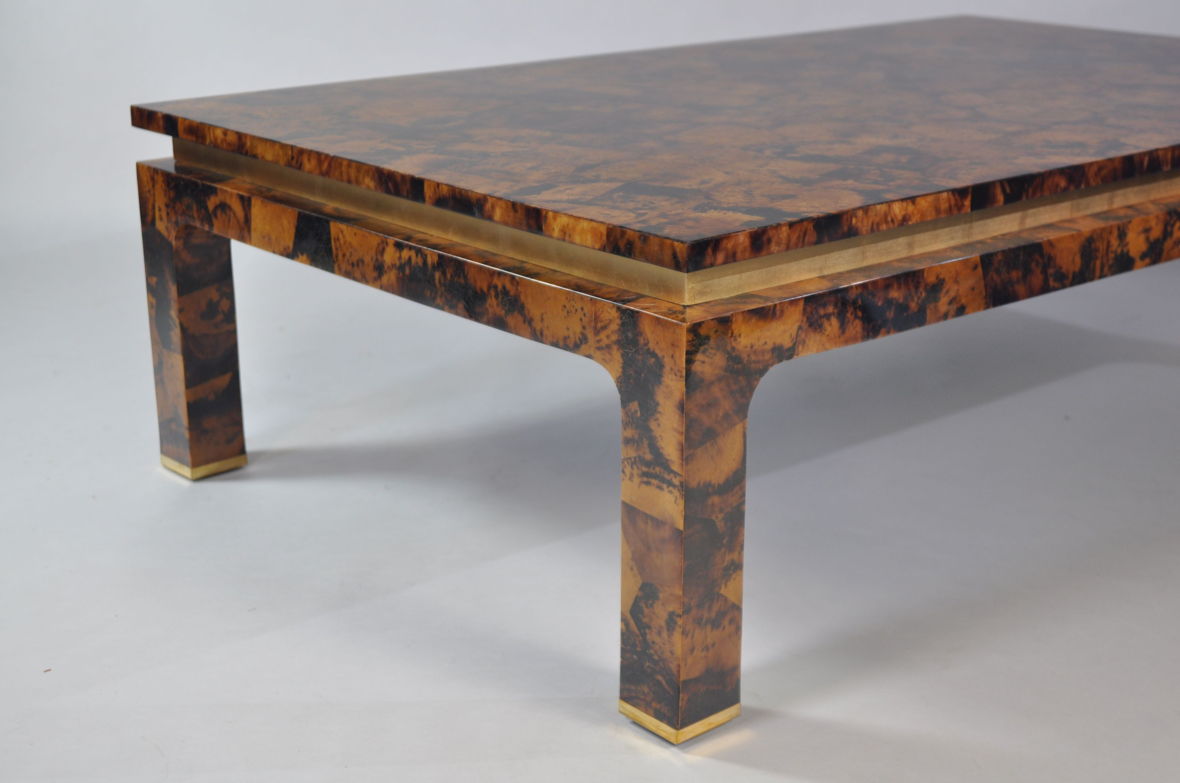 Delicieux Tiger Penshell Coffee Table